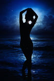 Silhouette of young lady Royalty Free Stock Image