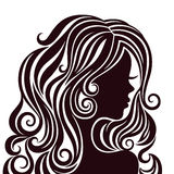Silhouette of a young lady with luxurious hair Stock Image