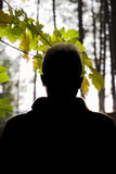 Silhouette of Young Man in Autumn Royalty Free Stock Images
