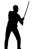 Silhouette of young man with sword Stock Photography