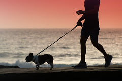 Silhouette of a young man walking a dog stock photography