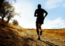 Silhouette of young sport man running on countryside in cross country workout at summer sunset. With  harsh sunlight effect in healthy lifestyle concept Royalty Free Stock Image