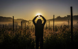 Silhouette young woman enjoying a moment outdoors. Silhouette young woman enjoying a moment outdoors and with heart symbol Royalty Free Stock Photo