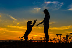 A silhouette of a young woman and her mutt dog. Royalty Free Stock Photography