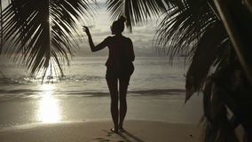 Silhouette of young woman looking at the sunset. Rear view. stock video footage