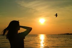 Silhouette of young woman watching the sun rising on golden sky with a flying bird. Background Royalty Free Stock Photos