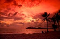 Silhouetted вала кокоса Стоковая Фотография