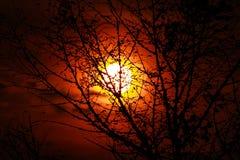 silhouetted валы захода солнца Стоковая Фотография