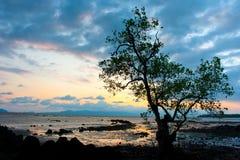 silhouetted вал Стоковая Фотография RF
