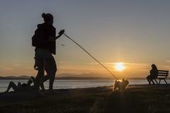 Silhouetted взморьем ходок doggy Стоковая Фотография