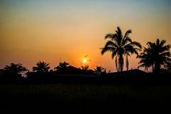 Silhouetted av kokospalmen på solnedgången Royaltyfria Bilder