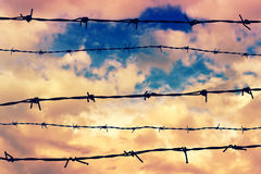 Silhouetted barbed wire Royalty Free Stock Photography