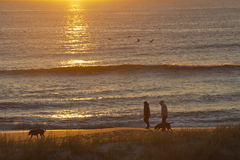 Silhouetted Couple Walk Dogs By the Sea At Sunrise Stock Images