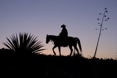 Silhouetted Cowboy Royalty Free Stock Photo