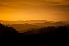 silhouetted dimmigt för kullar för gryning guld- Arkivbilder