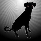 Silhouetted dog. Illustrated silhouette of black dog with cloudburst effect background Stock Photo
