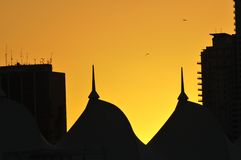 Silhouetted Domes. Domes and buildings on twilight with seagulls flying above royalty free stock photography
