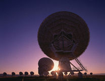 Silhouetted field of Large radio telescope dishes Stock Images