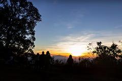 Silhouetted folk och träd Royaltyfria Bilder