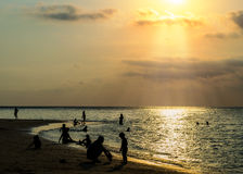 Silhouetted group of people on the beach and in the sea Royalty Free Stock Image