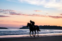 A silhouetted horse rider galloping across a beach at sunrise. With all four hooves above the ground, Somo, Northern Spain stock photos