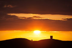 Silhouetted lamb on a hilltop at sunset Royalty Free Stock Photo