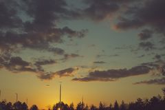 Silhouetted ljusa poler och sörjer träd under solnedgång Royaltyfri Bild