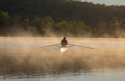 Silhouetted Man Rowing Single Scull on Foggy Water at Sunrise. Silhouetted Man in Hat Rowing Single Scull on Foggy Water at Sunrise with Trees in Distance in Stock Image