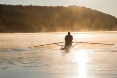 Silhouetted Man Rowing Single Scull on Foggy Water at Sunrise. With Trees in Distance in bright light Royalty Free Stock Photography