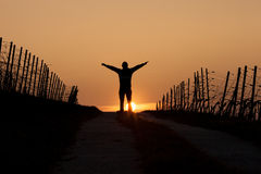 Silhouetted man standing in sunset Stock Image