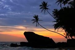 Silhouetted palmträd och vaggar på solnedgången, Unawatuna, Sri Lanka Royaltyfri Fotografi