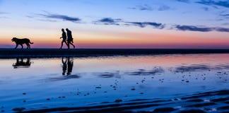 Silhouetted par som går hunden på stranden på solnedgången royaltyfri foto