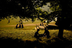 Silhouetted people picnicking. In countryside under tree canopy, barbecue smoke in background Stock Photo