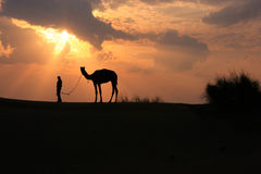 Silhouetted person with a camel at sunset, Thar desert near Jais Royalty Free Stock Images