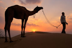 Silhouetted person with a camel at sunset, Thar desert near Jais Stock Photo