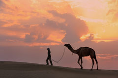 Silhouetted person with a camel at sunset, Thar desert near Jais Royalty Free Stock Photos