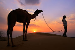 Silhouetted person with a camel at sunset, Thar desert near Jais Stock Images