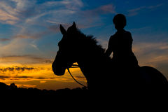 Silhouetted Rider At Sunset Royaltyfri Foto