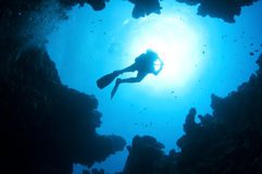 Silhouetted scuba divers Royalty Free Stock Image