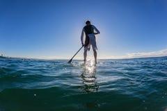 Silhouetted skuggablått för surfare SUP Royaltyfria Foton