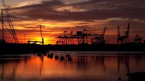 Silhouetted sunrise at the port of Valencia cranes working cargo shipping skyline with clouds reflected in the sea stock video