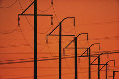 Silhouetted telephone lines Stock Images