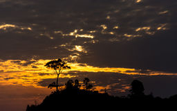 Silhouetted tree covered hilltop at Sunset. A Silhouetted tree covered hilltop at cloudy Sunset Stock Images