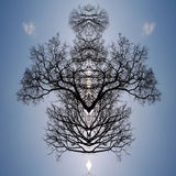 Silhouetted tree pattern Royalty Free Stock Photography