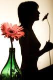 silhouettekvinna Arkivbilder