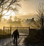 Silhouetten in de winter Stock Foto