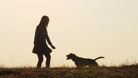 Silhouetten van aanbiddelijk meisje die een hond opleiden en het voeden op de aard stock videobeelden