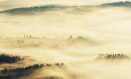 Silhouetten van bergen Een nevelige de herfstochtend Dawn in de Karpaten Royalty-vrije Stock Foto