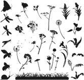 Silhouetten van bloemen, gras en insecten Royalty-vrije Stock Afbeeldingen