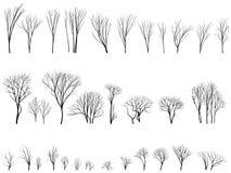 Silhouetten van bomen en struiken zonder bladeren. Royalty-vrije Stock Afbeeldingen